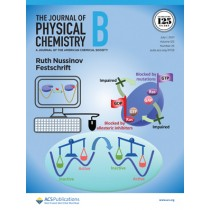 Journal of Physical Chemistry B: Volume 125, Issue 25
