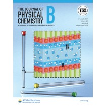 Journal of Physical Chemistry B: Volume 125, Issue 2