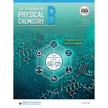 Journal of Physical Chemistry B: Volume 125, Issue 33