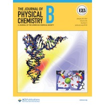 Journal of Physical Chemistry B: Volume 125, Issue 3