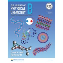 Journal of Physical Chemistry B: Volume 125, Issue 41