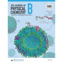 Journal of Physical Chemistry B: Volume 125, Issue 4