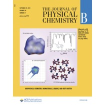 Journal of Physical Chemistry B: Volume 118, Issue 37
