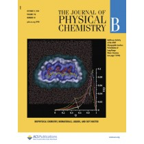 Journal of Physical Chemistry B: Volume 118, Issue 40