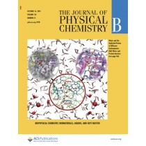 Journal of Physical Chemistry B: Volume 118, Issue 41