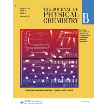 Journal of Physical Chemistry B: Volume 118, Issue 42