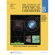 Journal of Physical Chemistry B: Volume 118, Issue 45