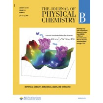 Journal of Physical Chemistry B: Volume 119, Issue 4