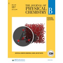 The Journal of Physical Chemistry B: Volume 120, Issue 19