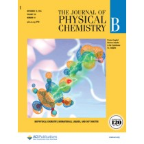 The Journal of Physical Chemistry B: Volume 120, Issue 44