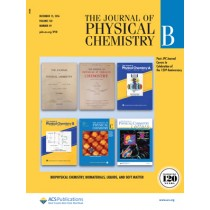 The Journal of Physical Chemistry B: Volume 120, Issue 49