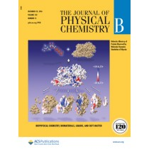 The Journal of Physical Chemistry B: Volume 120, Issue 51