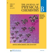 Journal of Physical Chemistry B: Volume 121, Issue 42