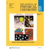 Journal of Physical Chemistry B: Volume 122, Issue 2