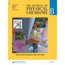 Journal of Physical Chemistry B: Volume 122, Issue 3