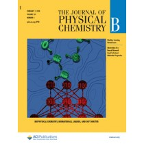 Journal of Physical Chemistry B: Volume 122, Issue 4