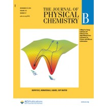 Journal of Physical Chemistry B: Volume 122, Issue 47