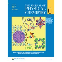 Journal of Physical Chemistry C: Volume 119, Issue 19