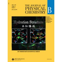 The Journal of Physical Chemistry B: Volume 114, Issue 23