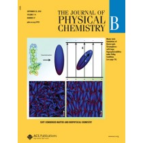 The Journal of Physical Chemistry B: Volume 114, Issue 37