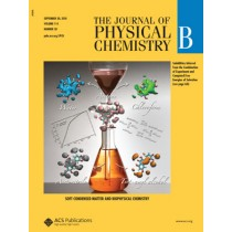 The Journal of Physical Chemistry B: Volume 114, Issue 38