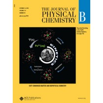 The Journal of Physical Chemistry B: Volume 114, Issue 40