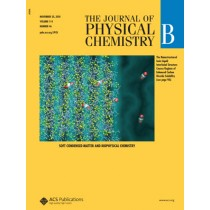 The Journal of Physical Chemistry B: Volume 114, Issue 46