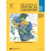 The Journal of Physical Chemistry B: Volume 114, Issue 48