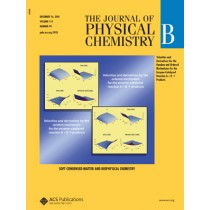 The Journal of Physical Chemistry B: Volume 114, Issue 49