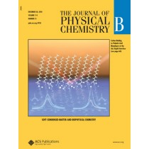The Journal of Physical Chemistry B: Volume 114, Issue 51