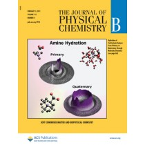 The Journal of Physical Chemistry B: Volume 115, Issue 4