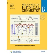 The Journal of Physical Chemistry B: Volume 115, Issue 19