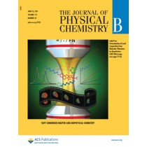 The Journal of Physical Chemistry B: Volume 115, Issue 24