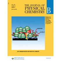 The Journal of Physical Chemistry B: Volume 115, Issue 26