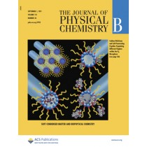 The Journal of Physical Chemistry B: Volume 115, Issue 34