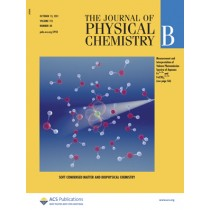 The Journal of Physical Chemistry B: Volume 115, Issue 40