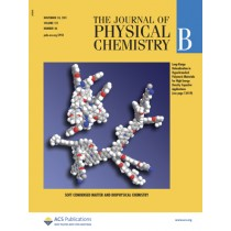 The Journal of Physical Chemistry B: Volume 115, Issue 46