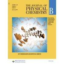 The Journal of Physical Chemistry B: Volume 115, Issue 47