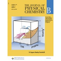 The Journal of Physical Chemistry B: Volume 115, Issue 48