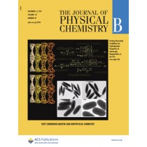 The Journal of Physical Chemistry B: Volume 115, Issue 49