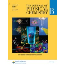 The Journal of Physical Chemistry B: Volume 116, Issue 1