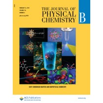 The Journal of Physical Chemistry B: Volume 116, Issue 6