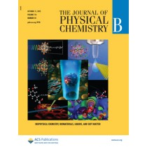 The Journal of Physical Chemistry B: Volume 116, Issue 40