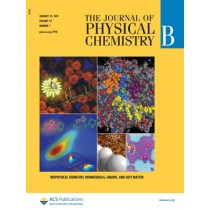 The Journal of Physical Chemistry B: Volume 117, Issue 1