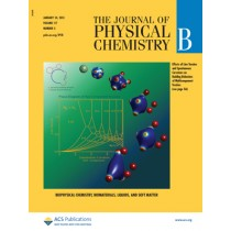 The Journal of Physical Chemistry B: Volume 117, Issue 3