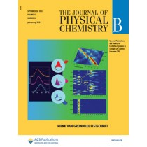 The Journal of Physical Chemistry B: Volume 117, Issue 38