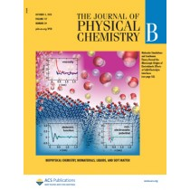 The Journal of Physical Chemistry B: Volume 117, Issue 39