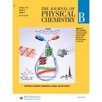 The Journal of Physical Chemistry B: Volume 117, Issue 41