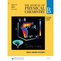 The Journal of Physical Chemistry B: Volume 117, Issue 42