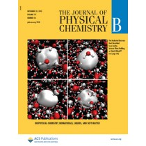 The Journal of Physical Chemistry B: Volume 117, Issue 46